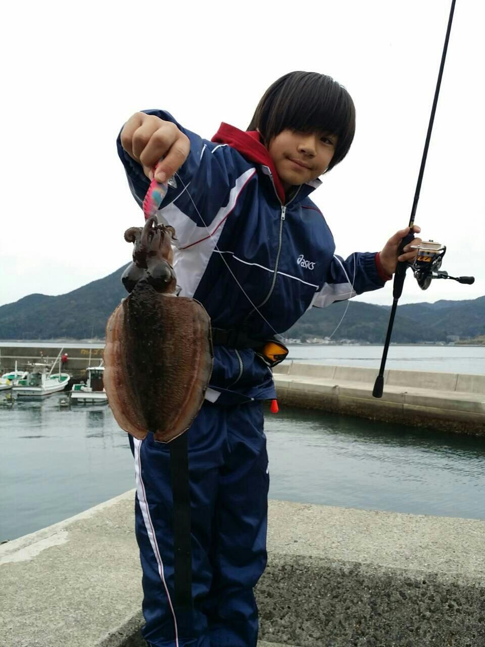 小悪魔さんの投稿画像,写っている魚はコウイカ