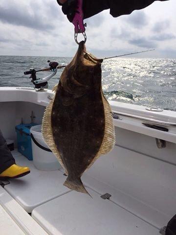 SHOEIさんの投稿画像,写っている魚はヒラメ