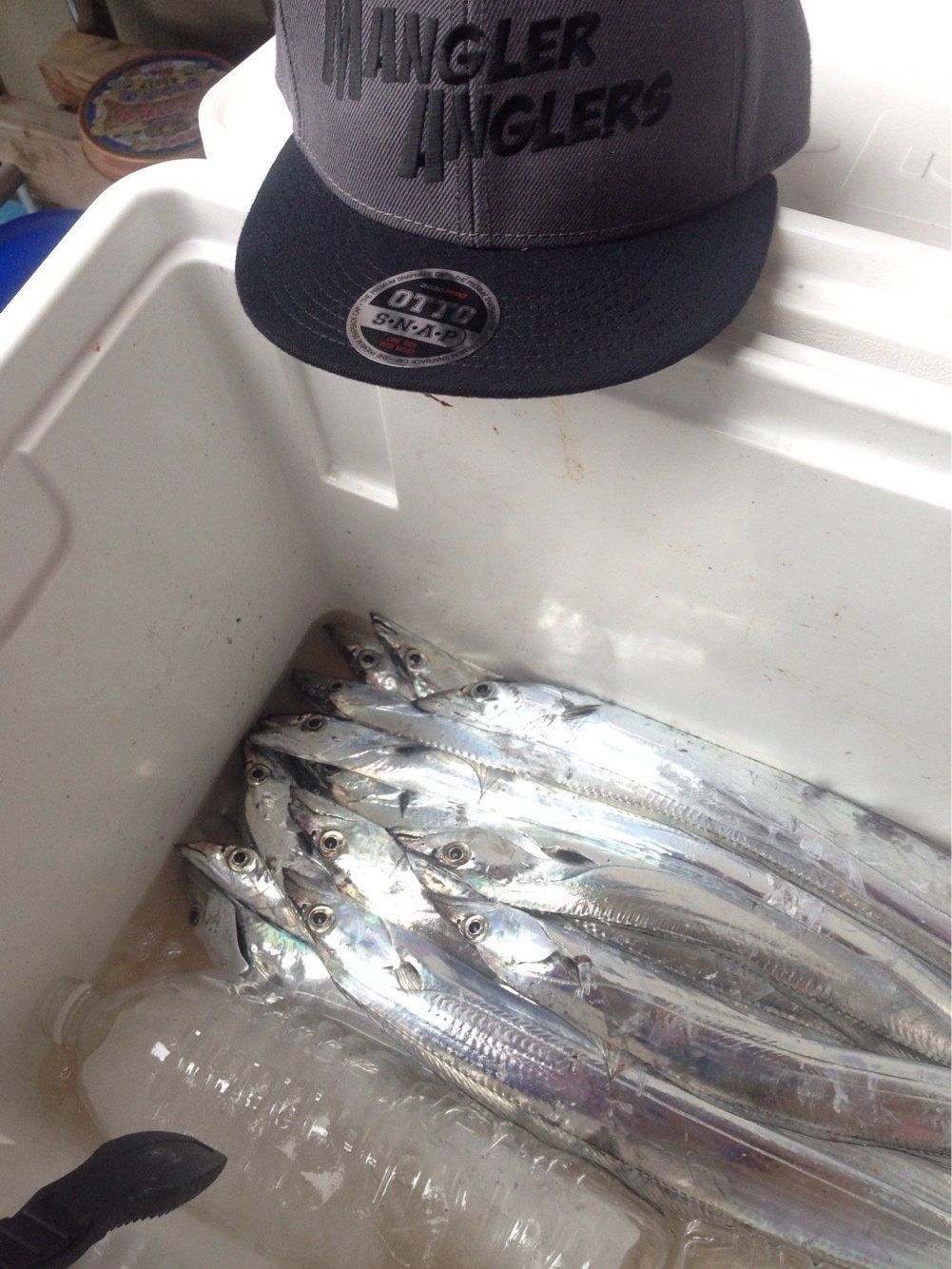 ngp-giroさんの投稿画像,写っている魚はタチウオ