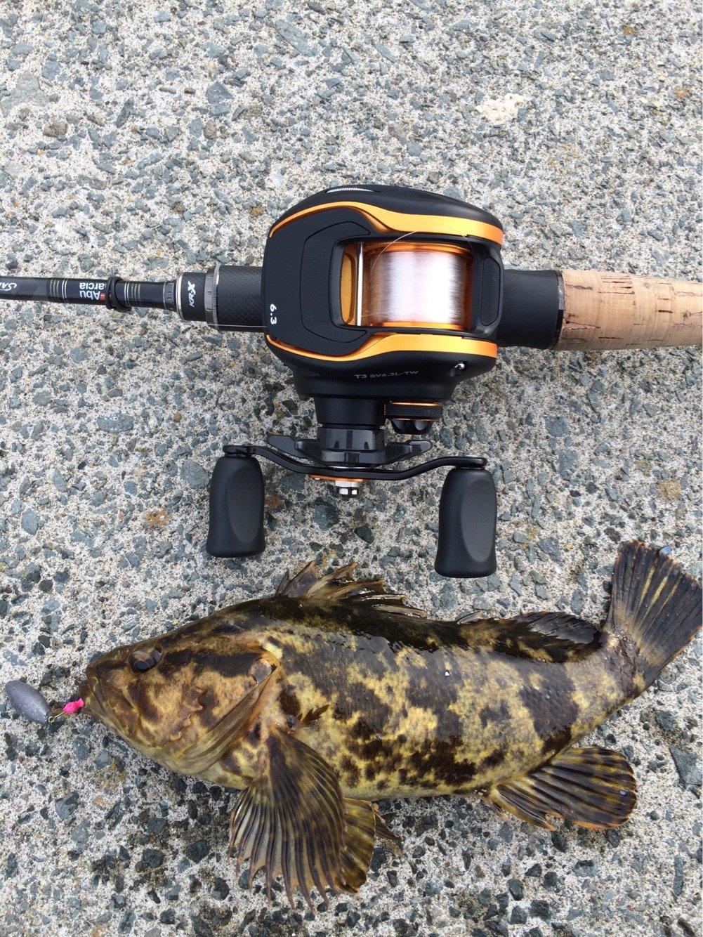 ささきょんさんの投稿画像,写っている魚はタケノコメバル