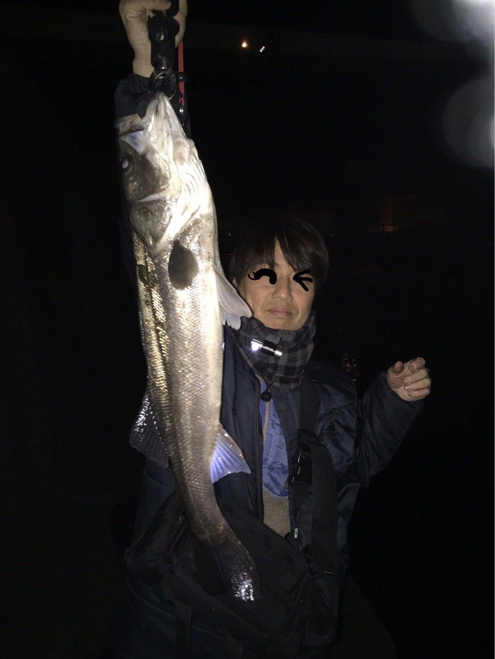 グレートさんの投稿画像,写っている魚はスズキ