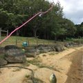 長谷川 真一さんの福岡県でのブルーギルの釣果写真