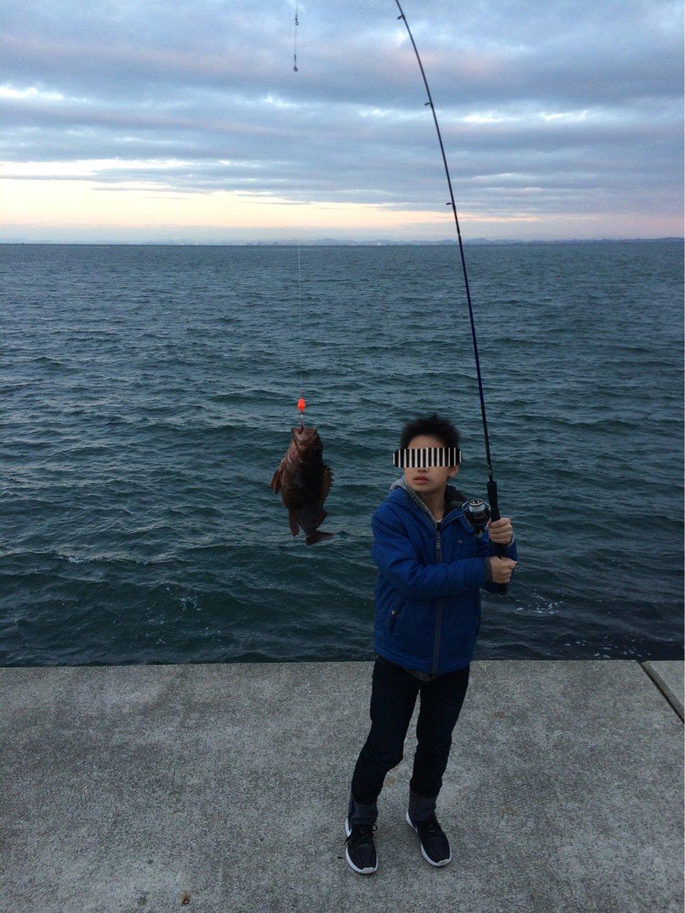 ひろきさんの投稿画像,写っている魚はカサゴ