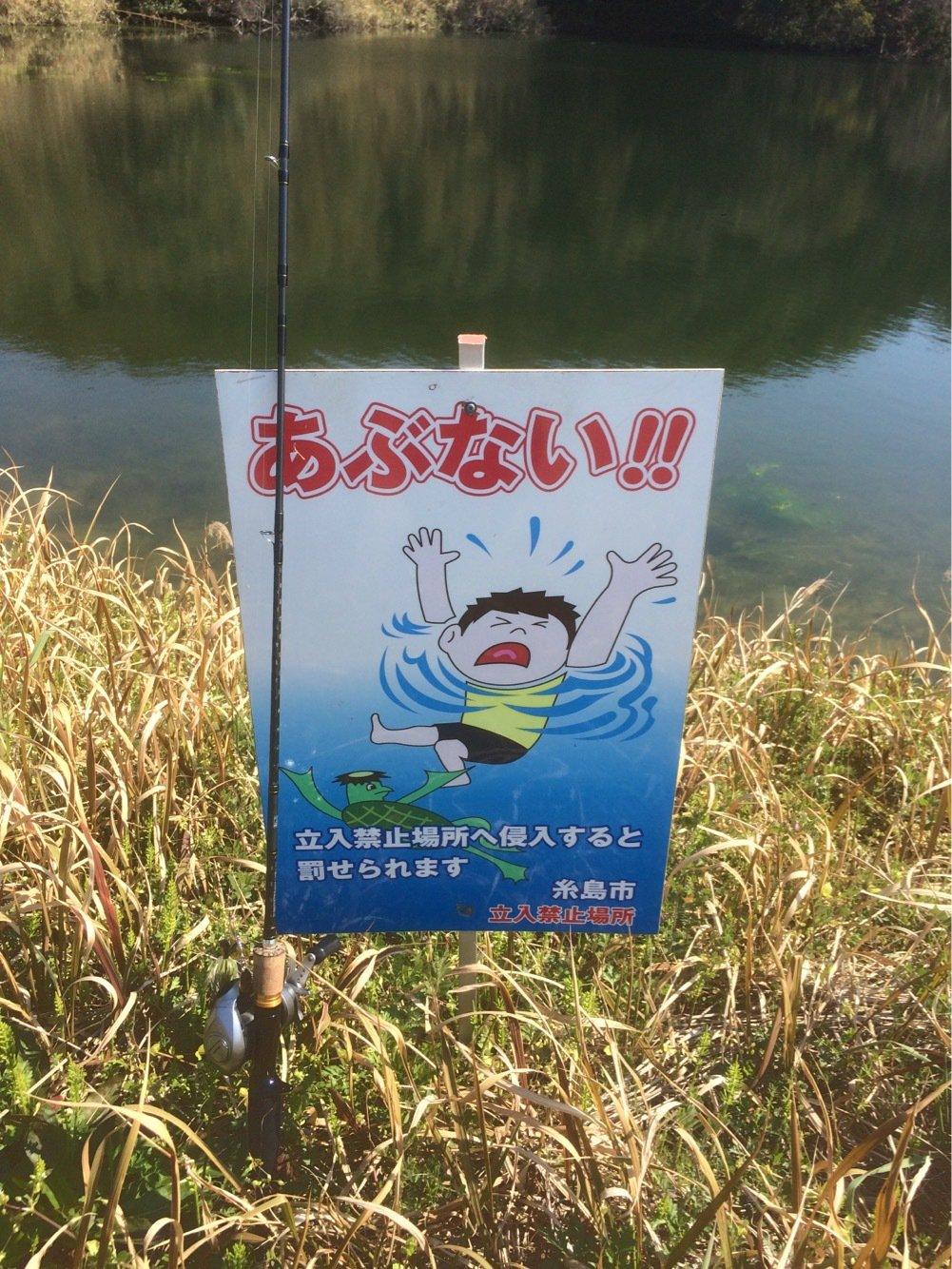 ヤマショウさんの投稿画像,写っている魚は