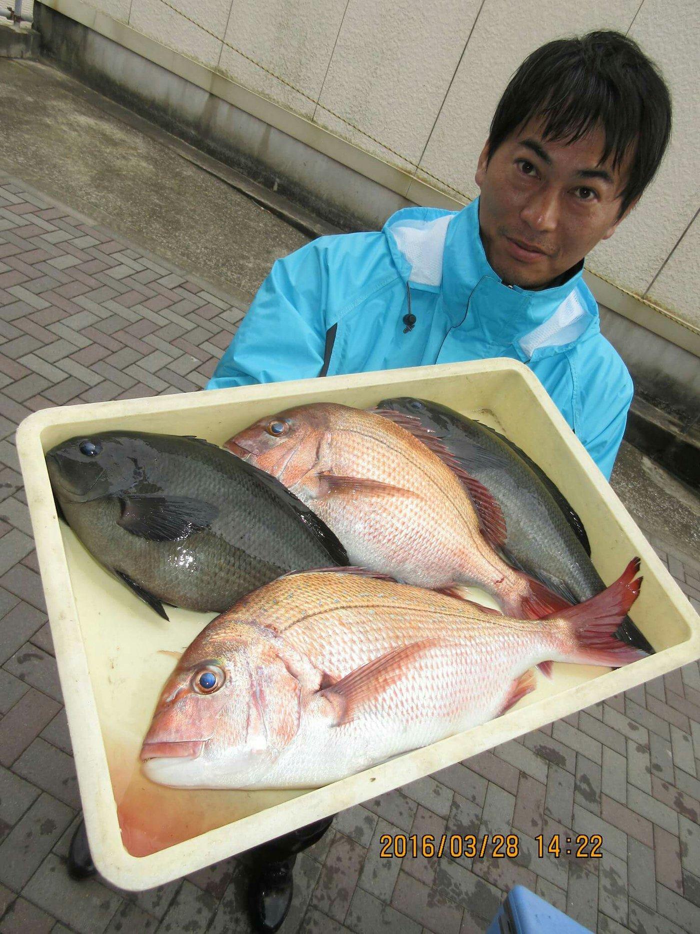 三宿のたこ焼屋さんの投稿画像,写っている魚はマダイ