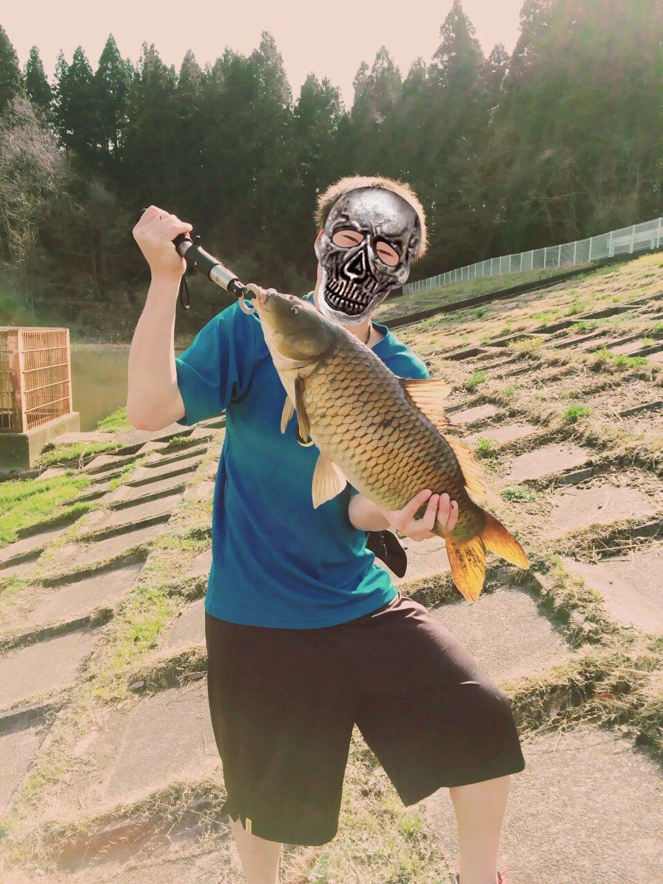 はるきさんの投稿画像,写っている魚はコイ