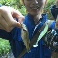 ラッキーさんの福島県本宮市でのスモールマウスバスの釣果写真