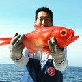boboss5さんの東京都利島村での釣果写真