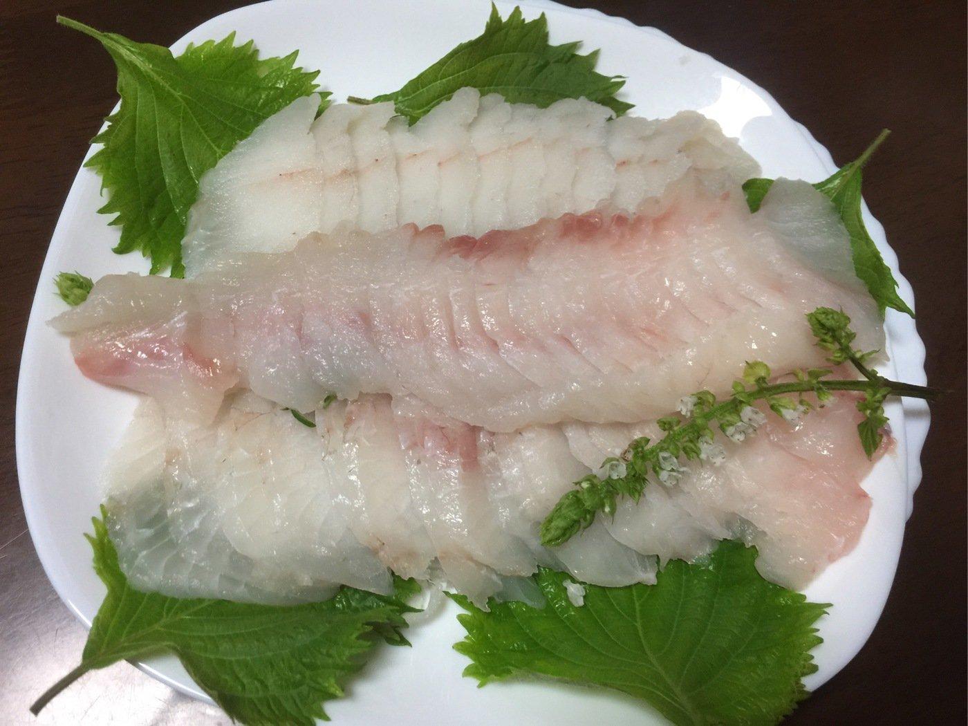 コーキさんの投稿画像,写っている魚はヒラメ