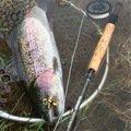 TAKAさんの山梨県北杜市での釣果写真