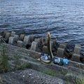 松下 渚さんの三重県でのウナギの釣果写真