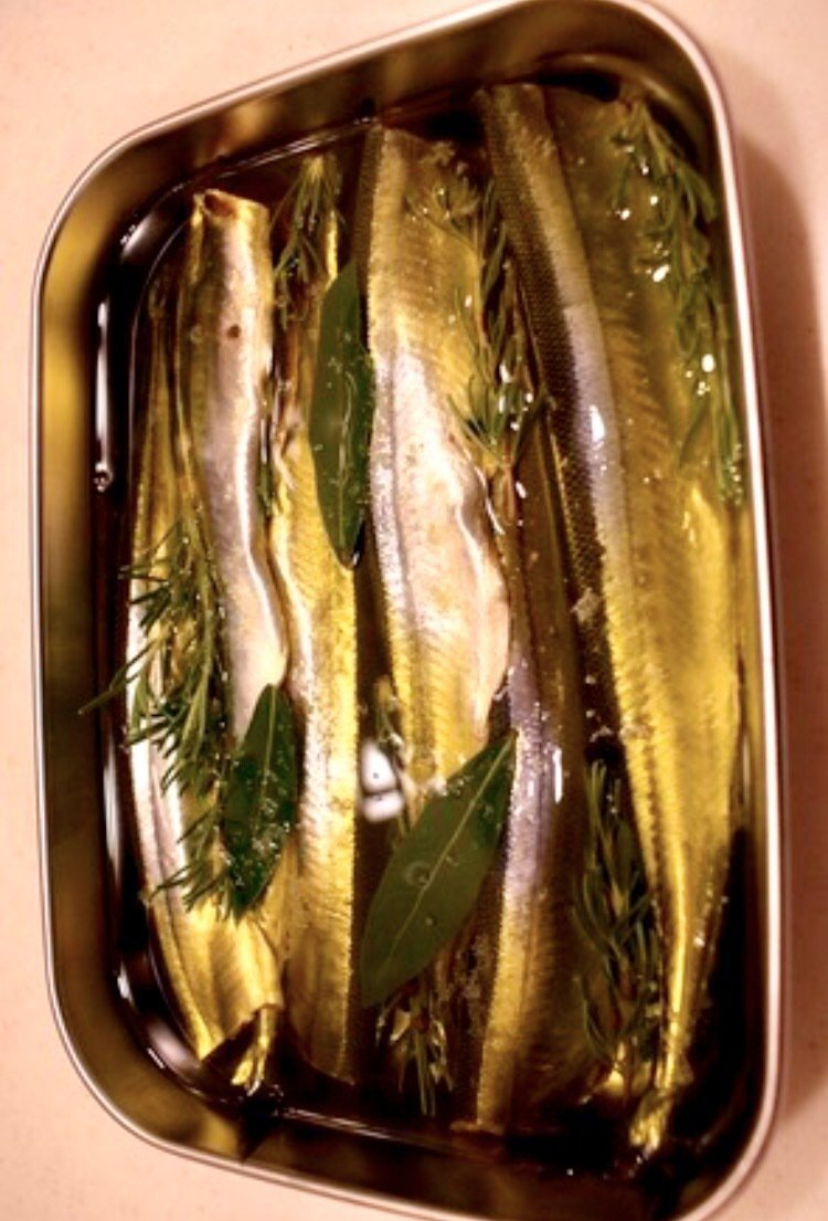 noriさんの投稿画像,写っている魚は