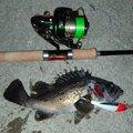tk84さんの北海道標津郡での釣果写真