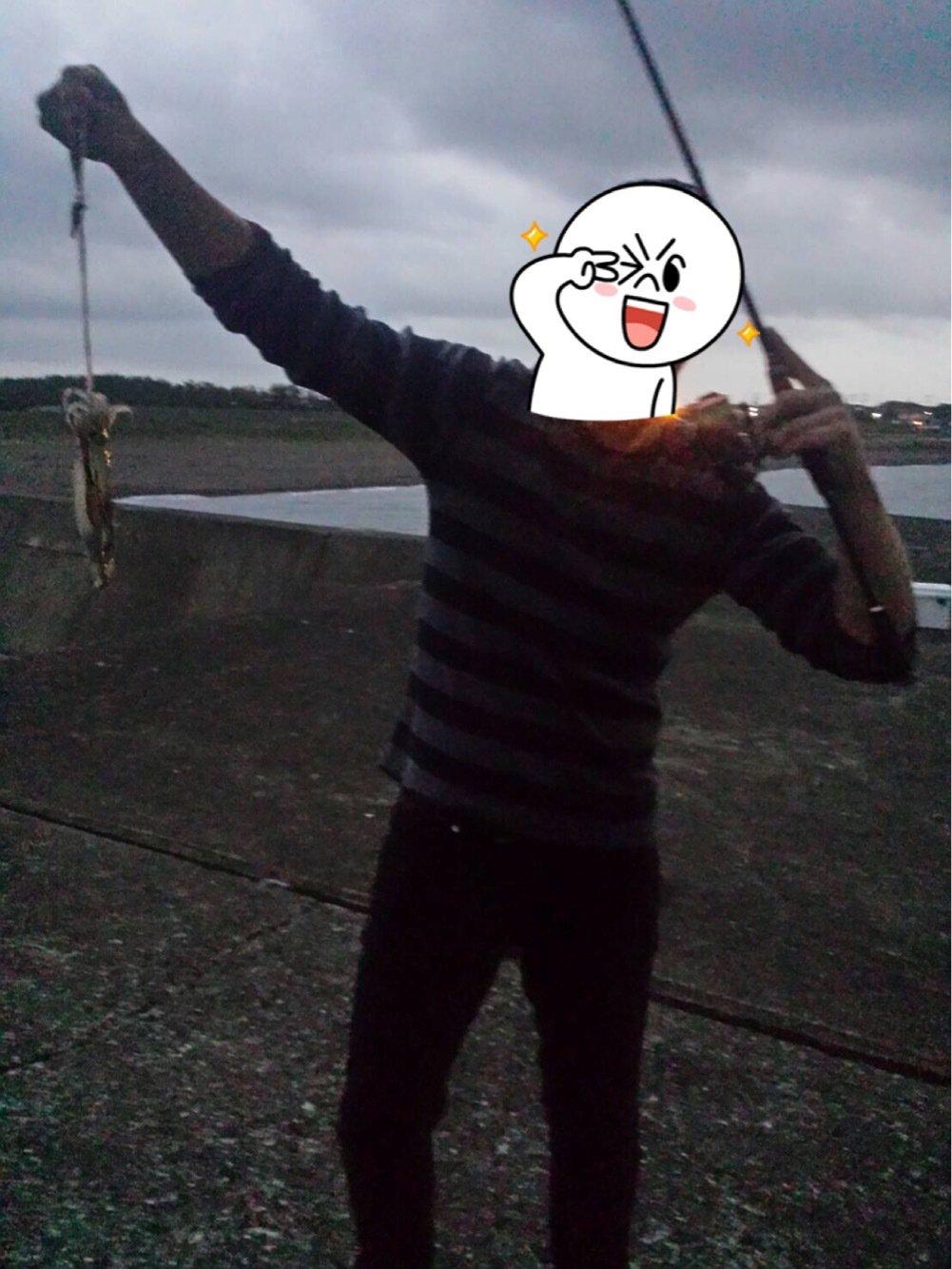 あつしさんの投稿画像,写っている魚はアオリイカ