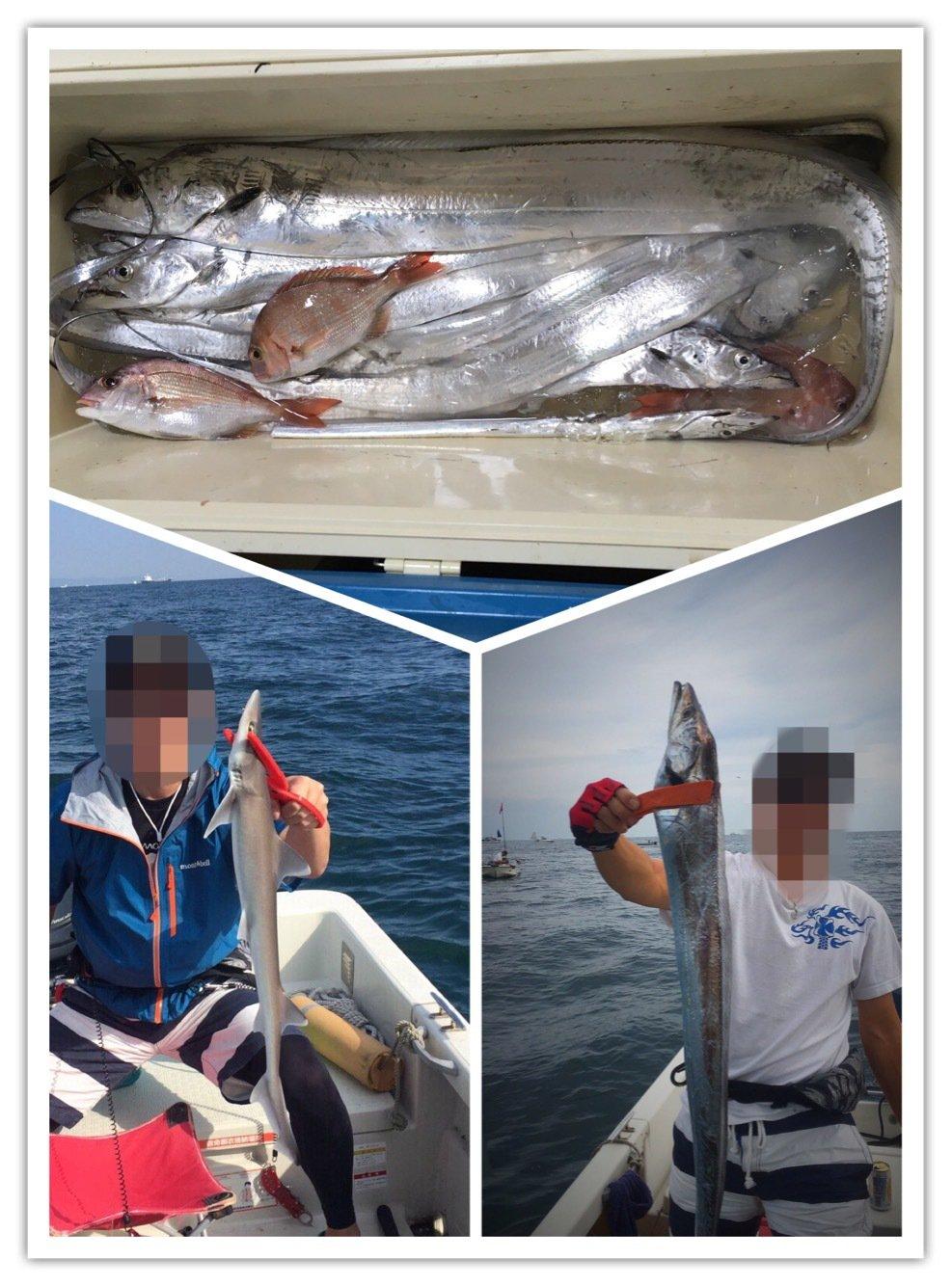 アンジェリーノさんの投稿画像,写っている魚はタチウオ