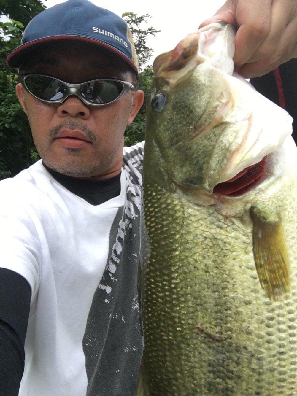 TAKさんの投稿画像,写っている魚はブラックバス
