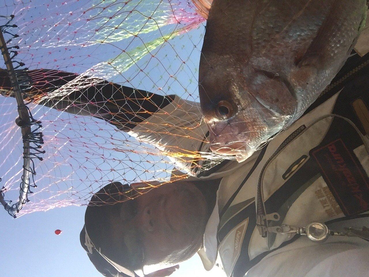 オジキさんの投稿画像,写っている魚はマダイ
