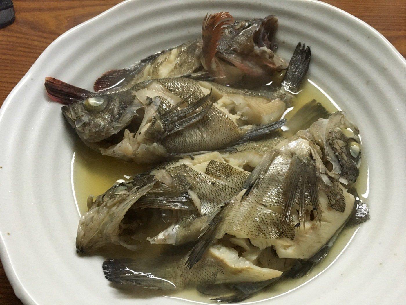 ゆうきりんりんさんの投稿画像,写っている魚はメバル