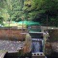 ビギにゃーさんの青森県南津軽郡での釣果写真