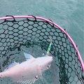 もっぴーさんの福岡県田川市での釣果写真