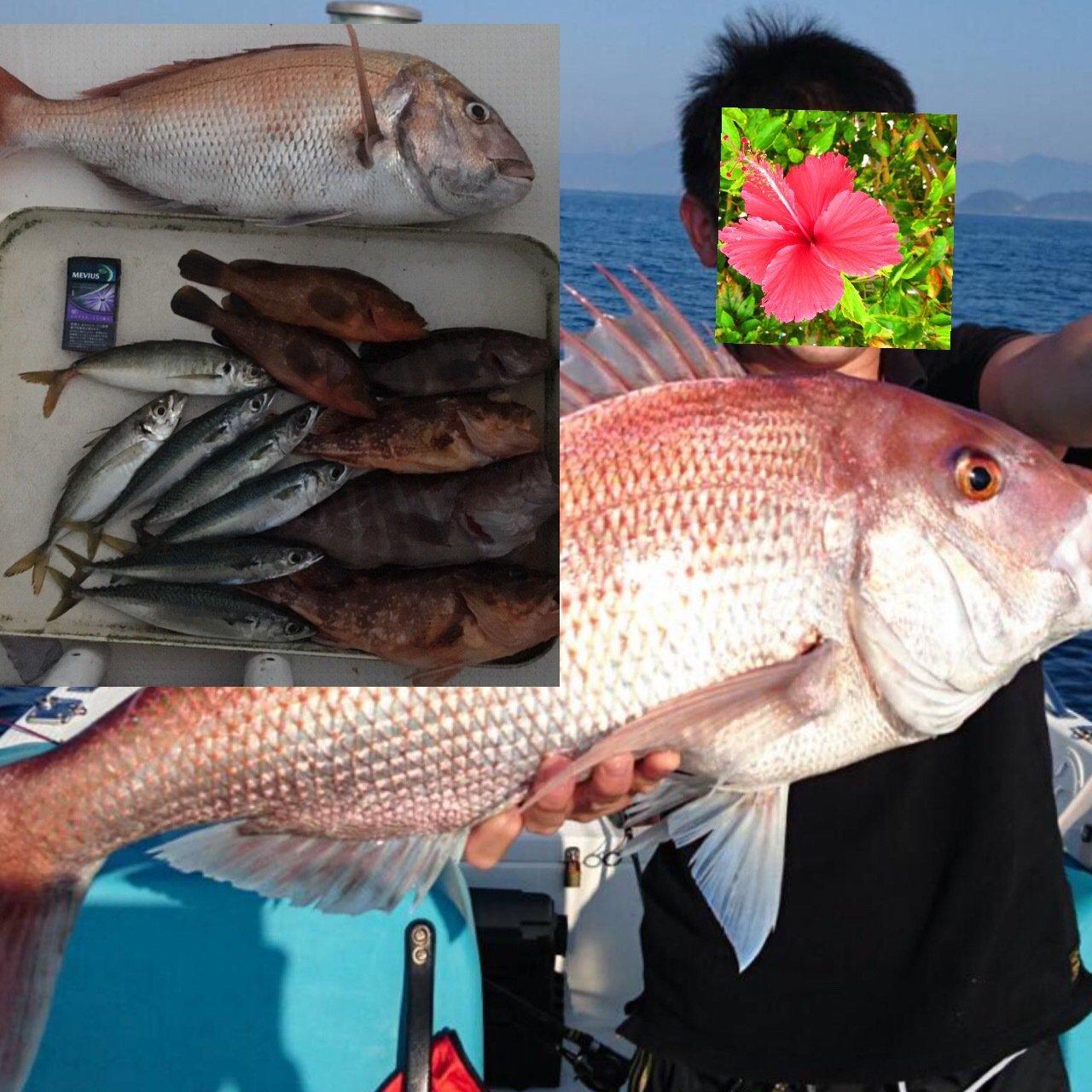 フィッシィングマスターさんの投稿画像,写っている魚はマダイ