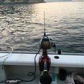パラマウントマンさんのキハダマグロの釣果写真