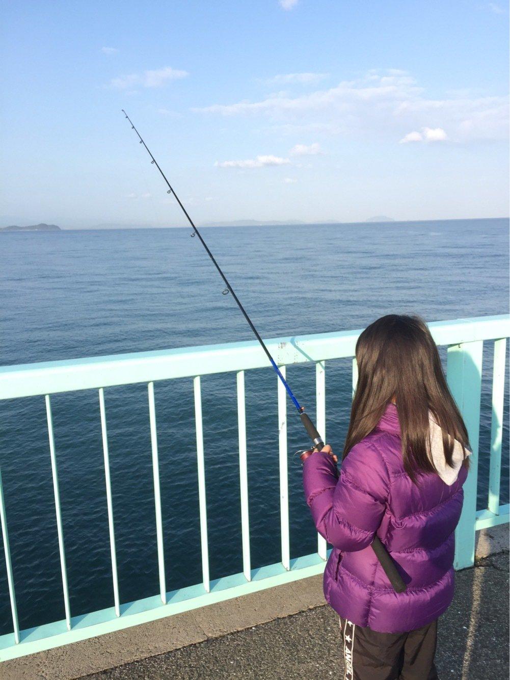 シタローさんの投稿画像,写っている魚はコウイカ