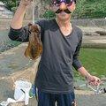 あおりさんの福井県鯖江市での釣果写真