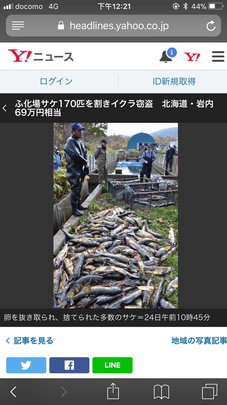 Ningyuさんの投稿画像,写っている魚は
