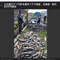 Ningyuさんの千葉県印西市での釣果写真