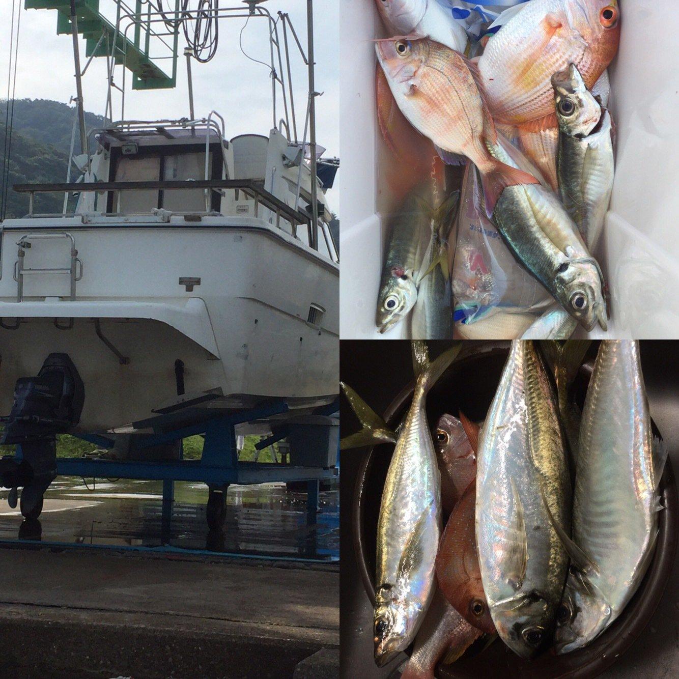 トンカツ王子さんの投稿画像,写っている魚はアジ
