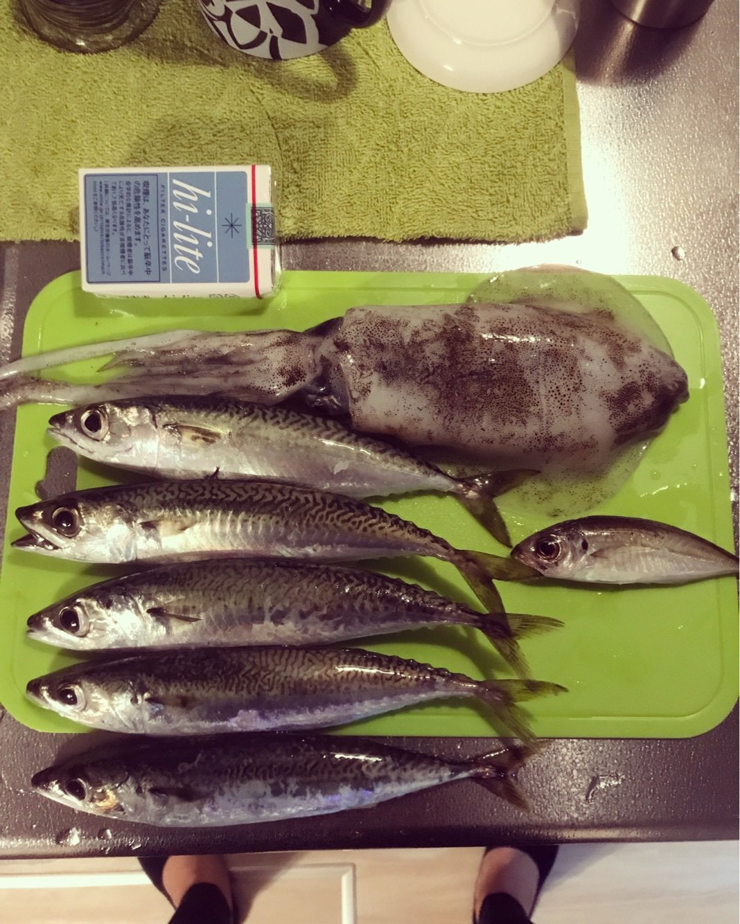 みっさんさんの投稿画像,写っている魚はアオリイカ,マサバ,アジ