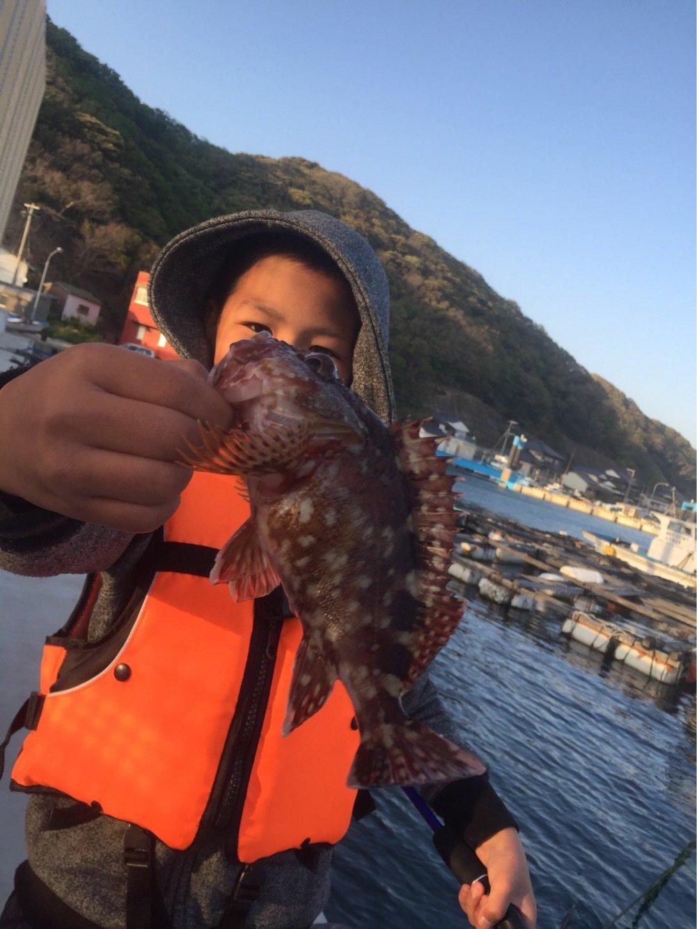 対馬の釣師さんの投稿画像,写っている魚はアオリイカ