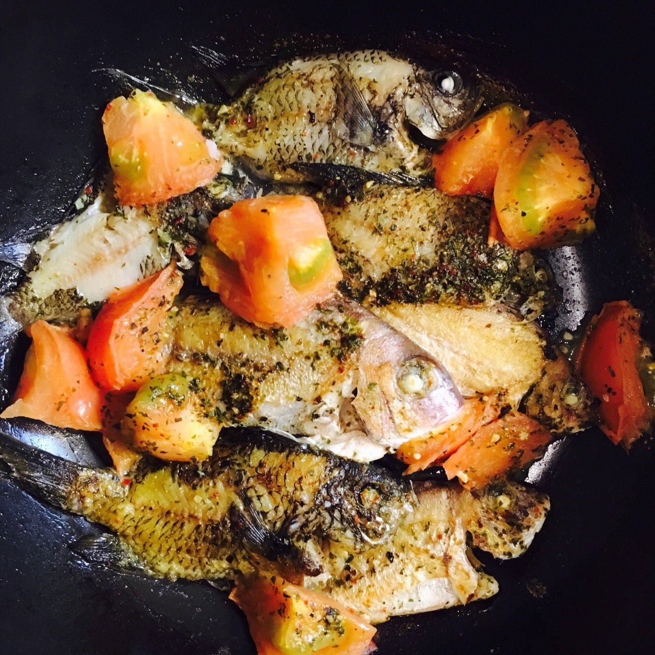 momoさんの投稿画像,写っている魚はマダイ,スズメダイ