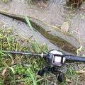 大地さんの愛知県津島市での釣果写真