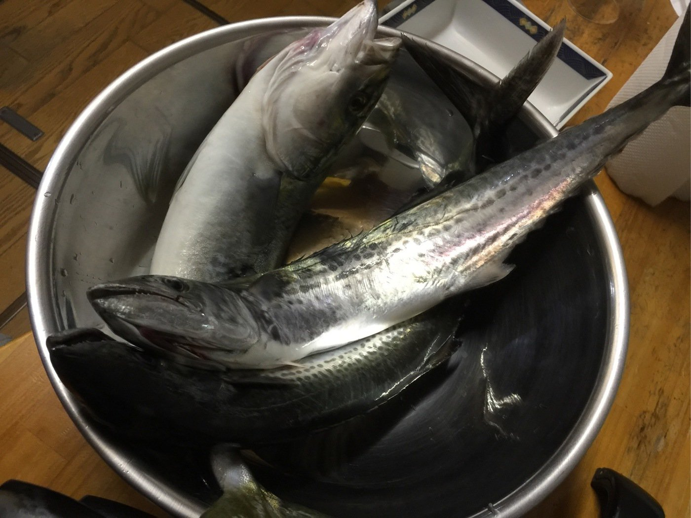 けしごむさんの投稿画像,写っている魚は