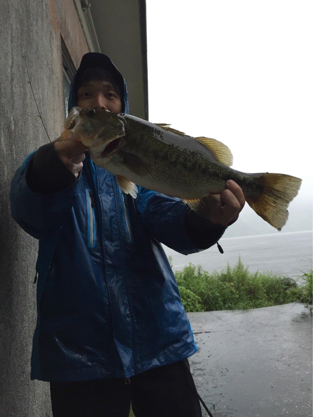 ヒローキさんの投稿画像,写っている魚はブラックバス