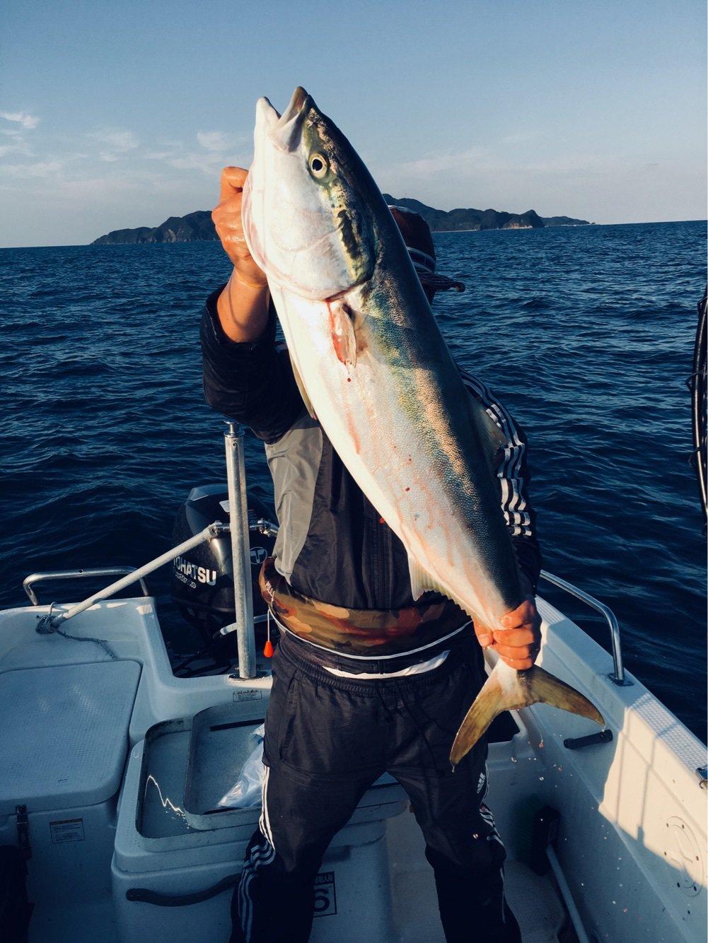 YTKさんの投稿画像,写っている魚はブリ