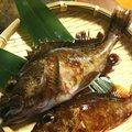 KRO さんの静岡県裾野市でのカサゴの釣果写真