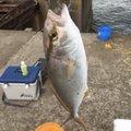 よーさんの福島県双葉郡での釣果写真