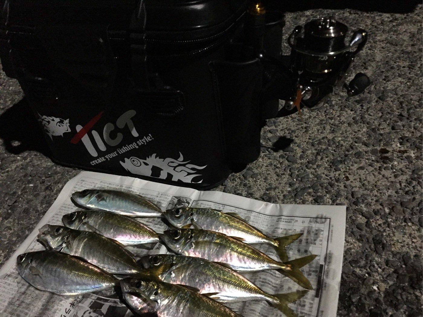k.isseyさんの投稿画像,写っている魚はアジ