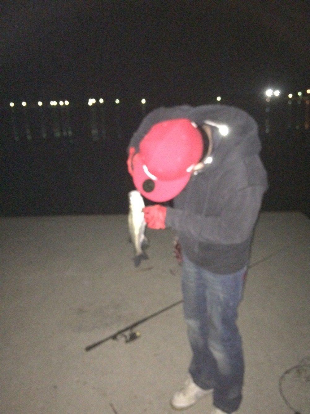 うりさんの投稿画像,写っている魚はスズキ