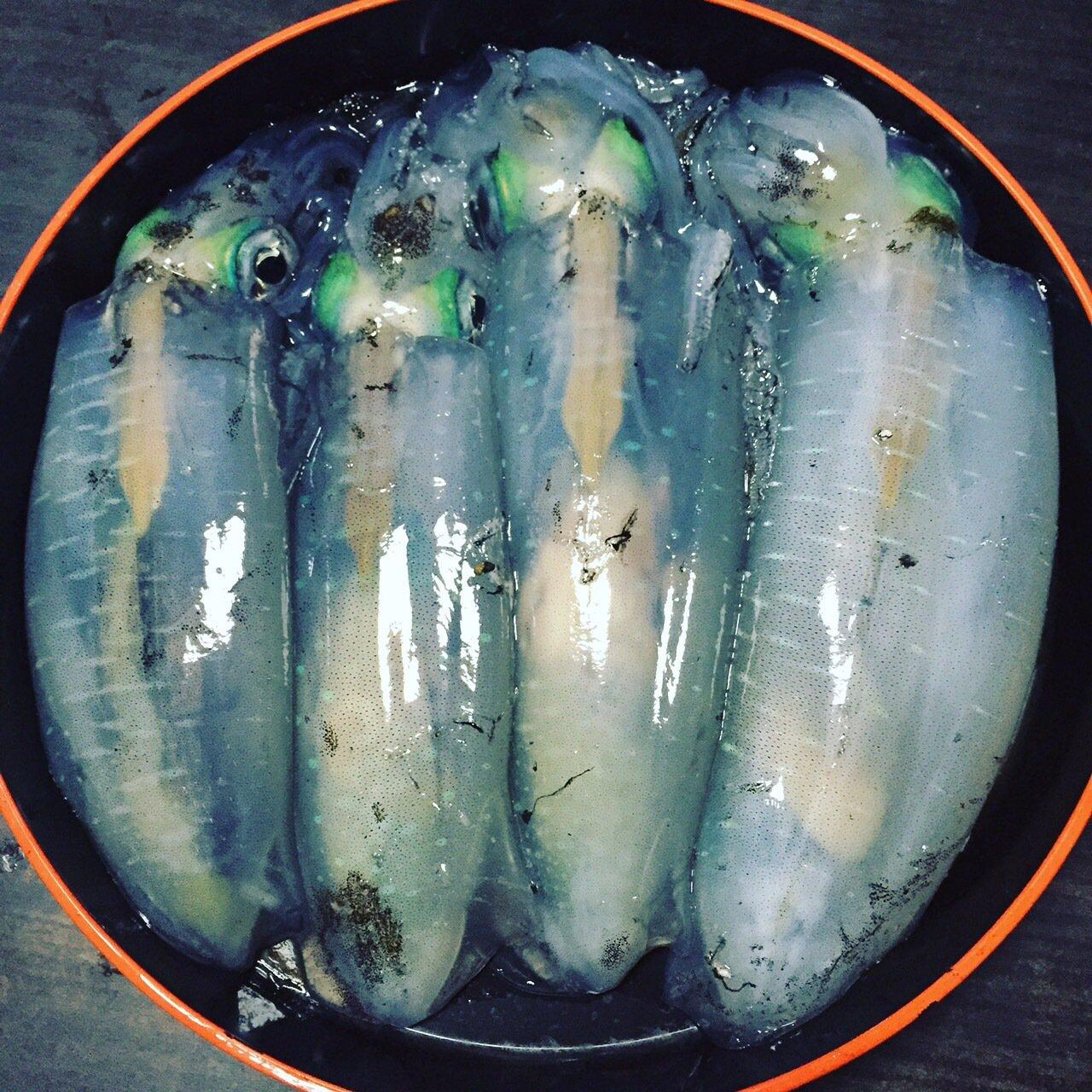 まいすけさんの投稿画像,写っている魚はアオリイカ