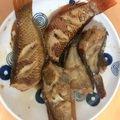 ミュータンスさんの福岡県福津市でのアカササノハベラの釣果写真