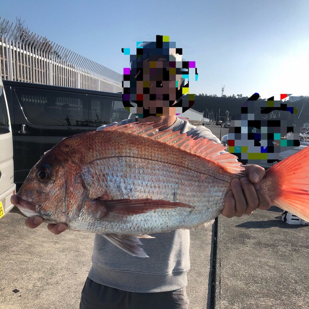 きいちさんの投稿画像,写っている魚はマダイ