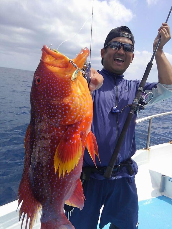 ハイタカさんの投稿画像,写っている魚はバラハタ