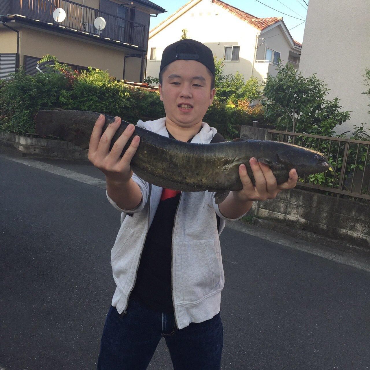 NIKEさんの投稿画像,写っている魚はナマズ