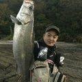そると小僧さんの福岡県古賀市でのスズキの釣果写真