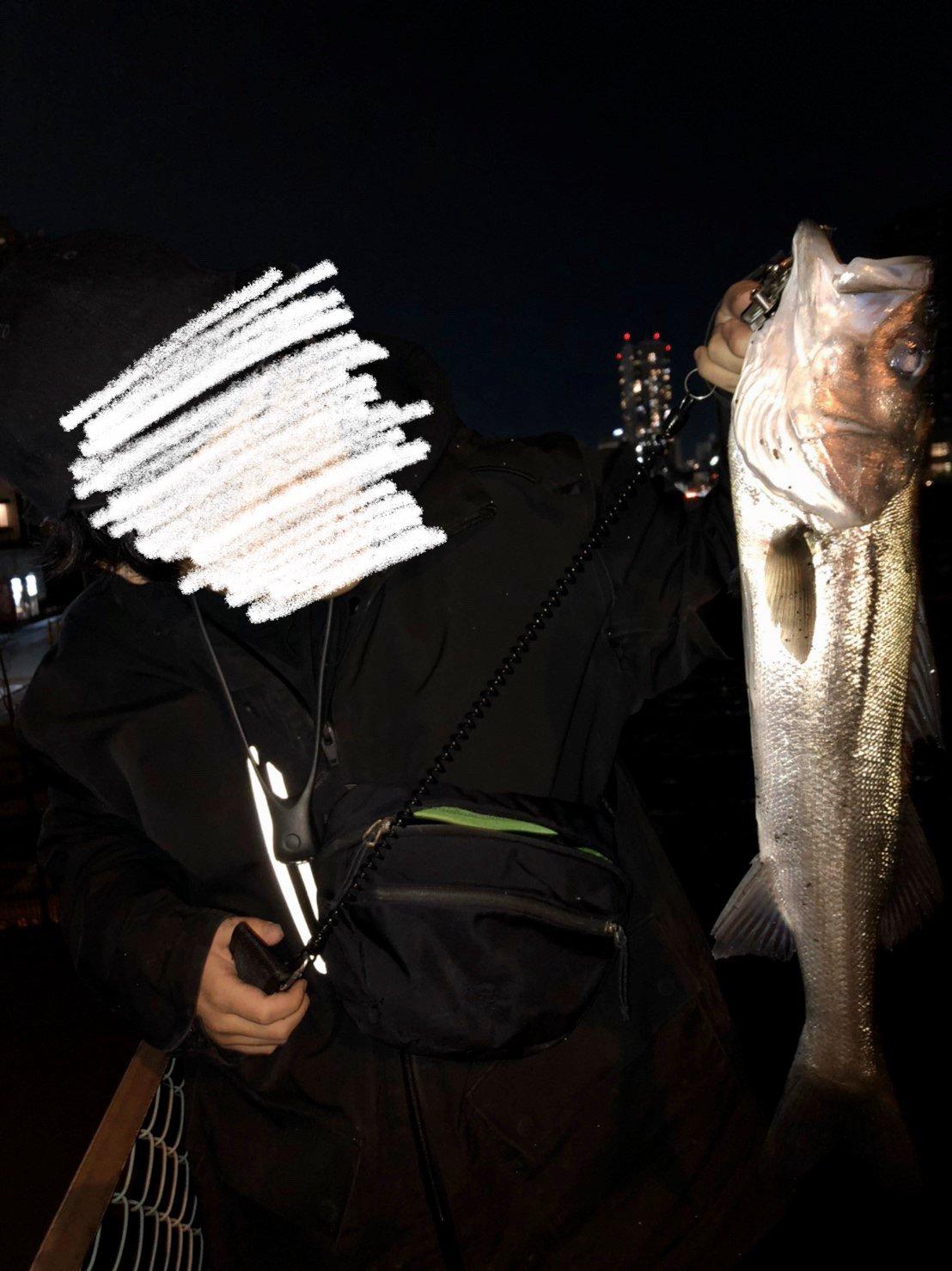 Hiroさんの投稿画像,写っている魚はスズキ